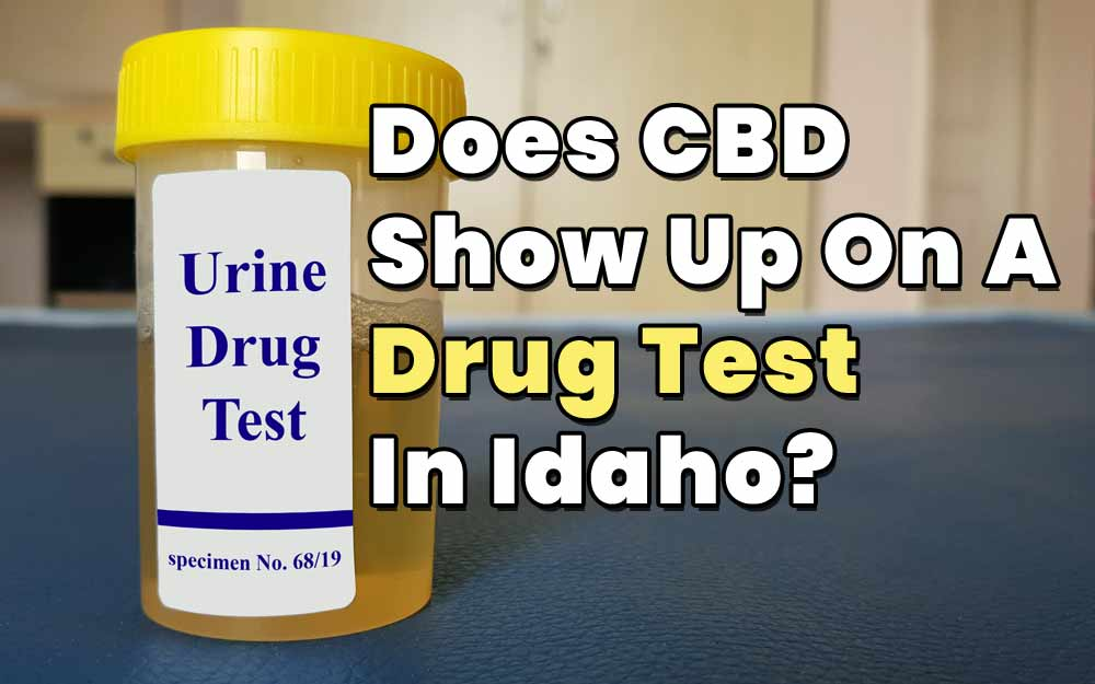 Does-CBD-Show-Up-On-A-Drug-Test-In-Idaho