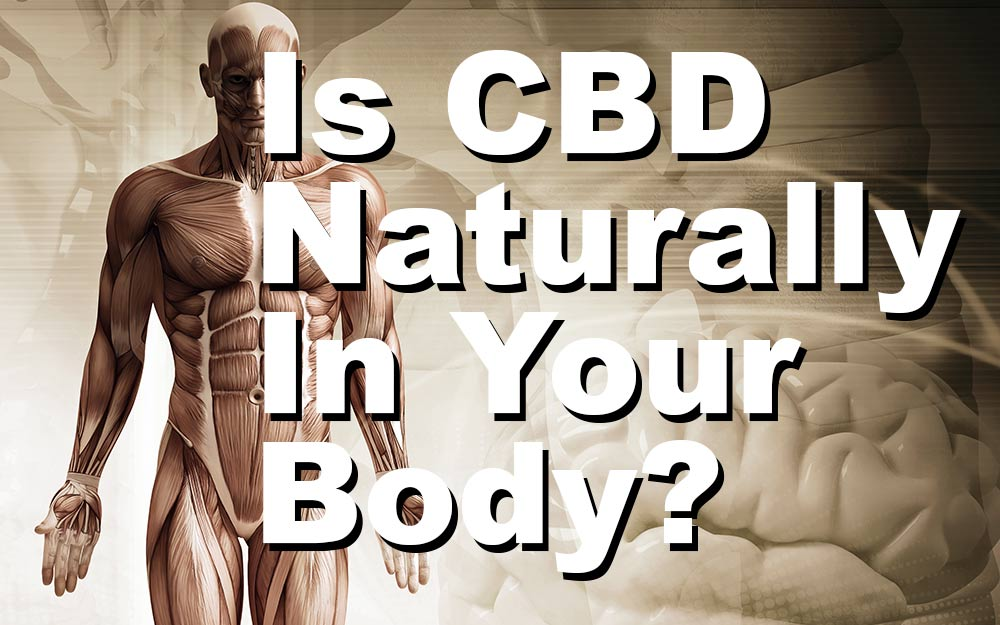 Is-CBD-Naturally-In-Your-Body
