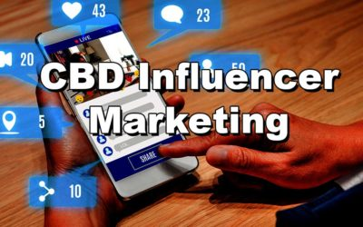 Paid CBD Influencer Marketing: Critical Questions Answered